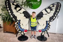 ausflug-kita-gwunderwelt-papiliorama-junge