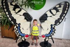 ausflug-kita-gwunderwelt-papiliorama-maedchen-freut-sich