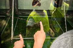 ausflug-kita-gwunderwelt-papiliorama-verpuppte-schmetterlinge