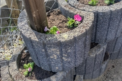 ferienpass-fruehling-kita-gwunderwelt-kraeutergarten-blumen-pflanzen