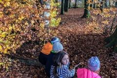 kita-gwunderwelt-im-wald-mit-kindern